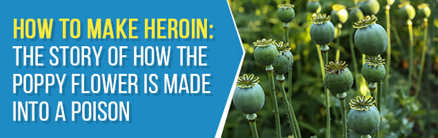 How to Make Heroin