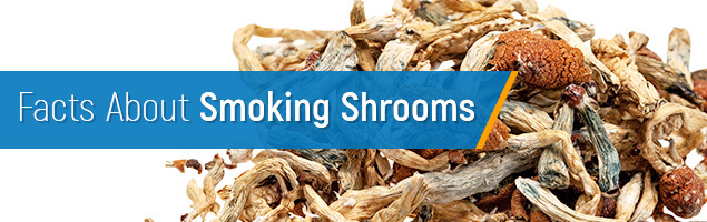 Facts About Smoking Shrooms