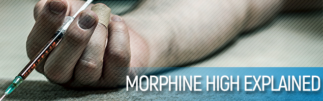 Morphine High Explained