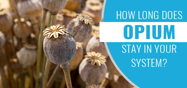 How Long Does Opium Stay in Your System?