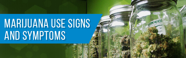 Marijuana Use Signs and Symptoms
