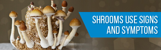Shrooms Use Signs and Symptoms