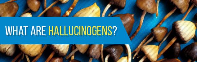 What are Hallucinogens?