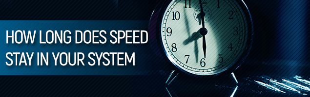 How Long Does Speed Stay In Your System