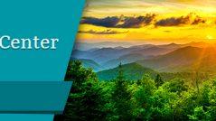 Ringer Center Review