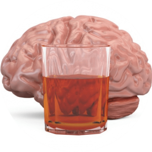 Brain and glass with alcohol drink
