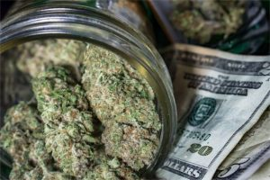 California cannabis buds and U.S. Dollars