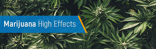 Marijuana High Effect concept image.