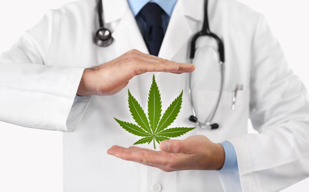 Doctors hands holding Marijuana leaf/symbol.