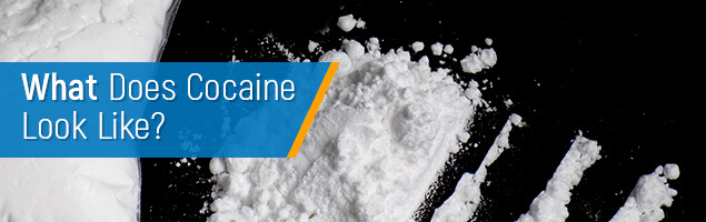 What Does Cocaine Look Like: Smell and Appearance