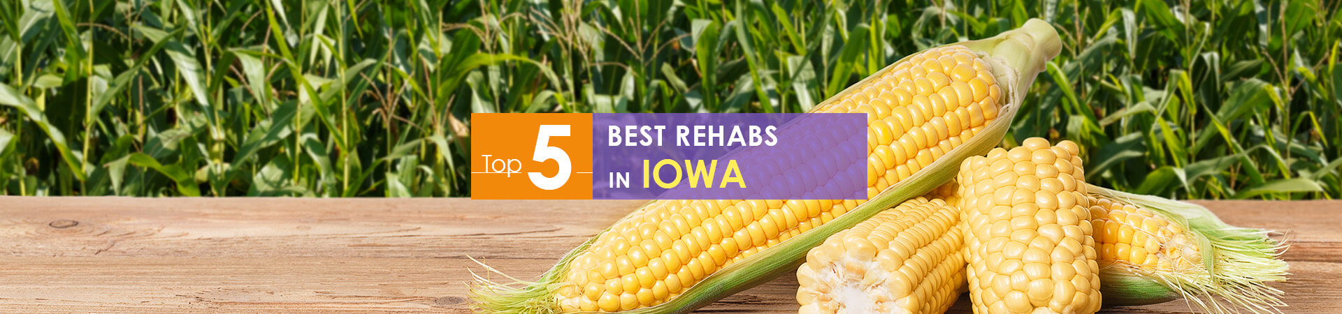 corncobs and top 5 rehabs in Iowa caption