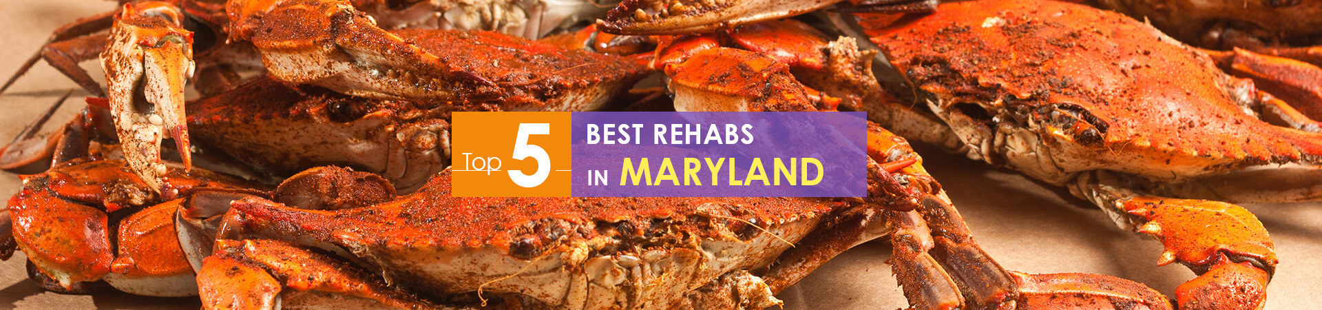 Chesapeake Bay blue claw crabs and top 5 rehabs caption