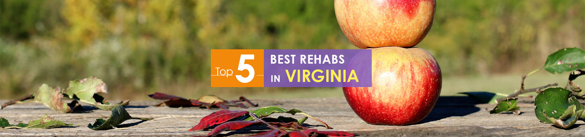 Virginia apples and top 5 rehabs caption