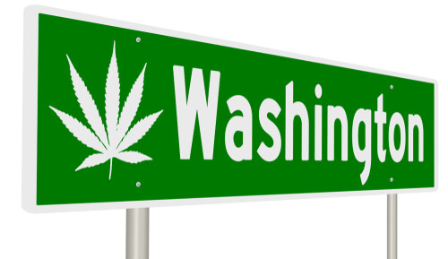 highway street sign to Washington with marijuana leaves printed