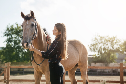 young woman taking care of a horse during therapy