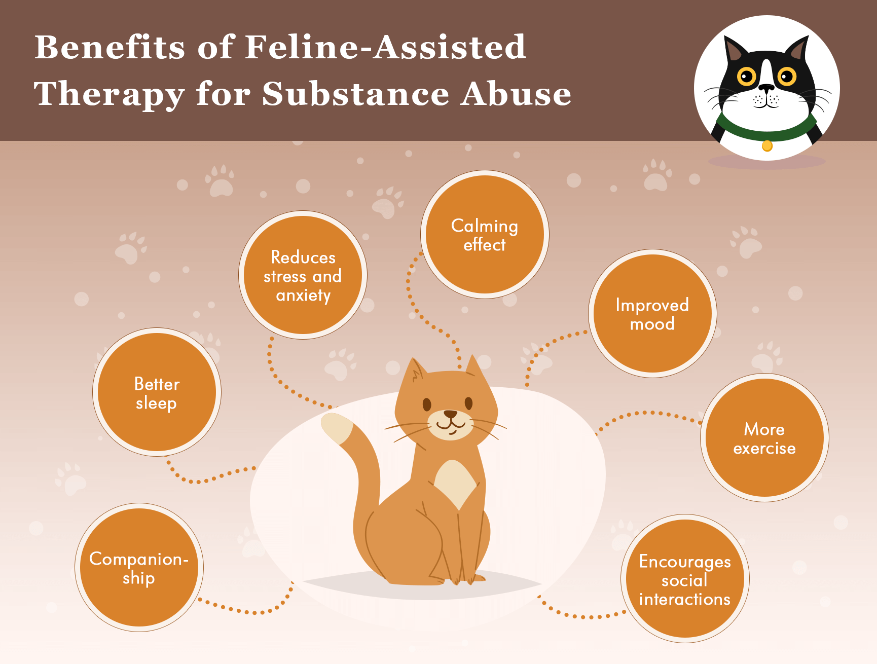 Benefits of cat-assisted therapy infographics