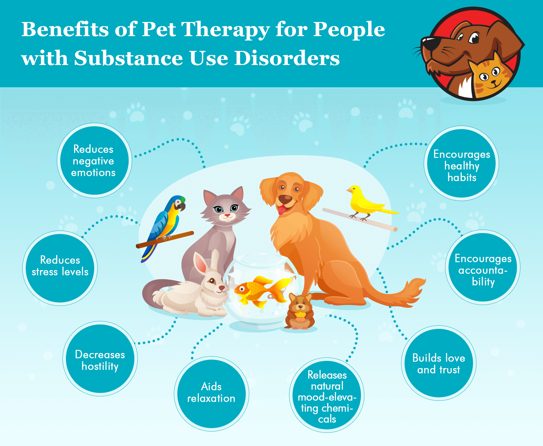 benefits of animal assisted therapy infographics