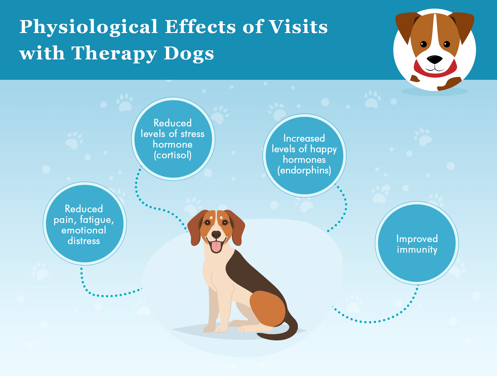 therapy dogs psychological effects infographics
