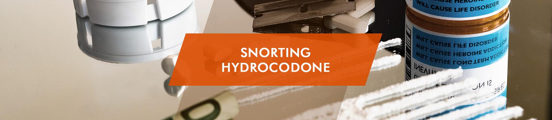 Snorting Hydrocodone