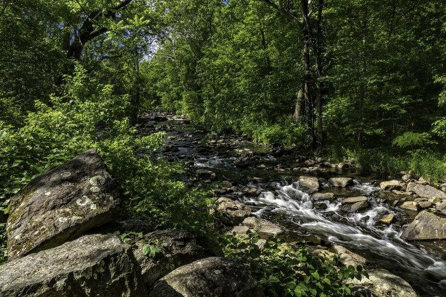 Running Creek Montgomery County PA