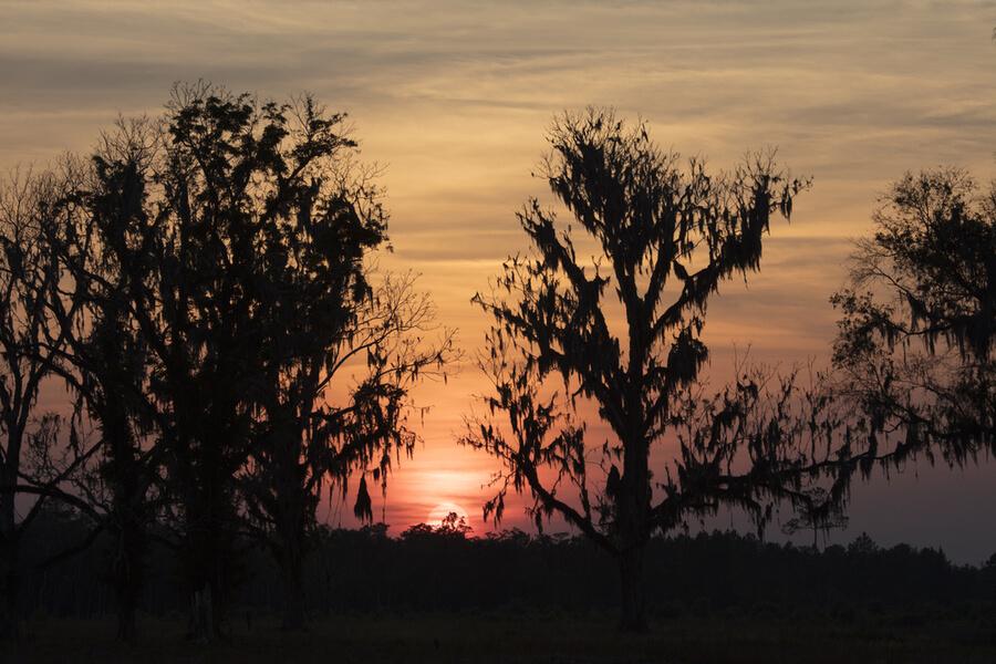 Sunset over Homerville Georgia, USa