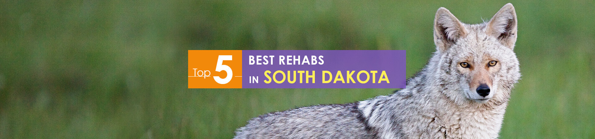 Best Rehabs in South Dakota