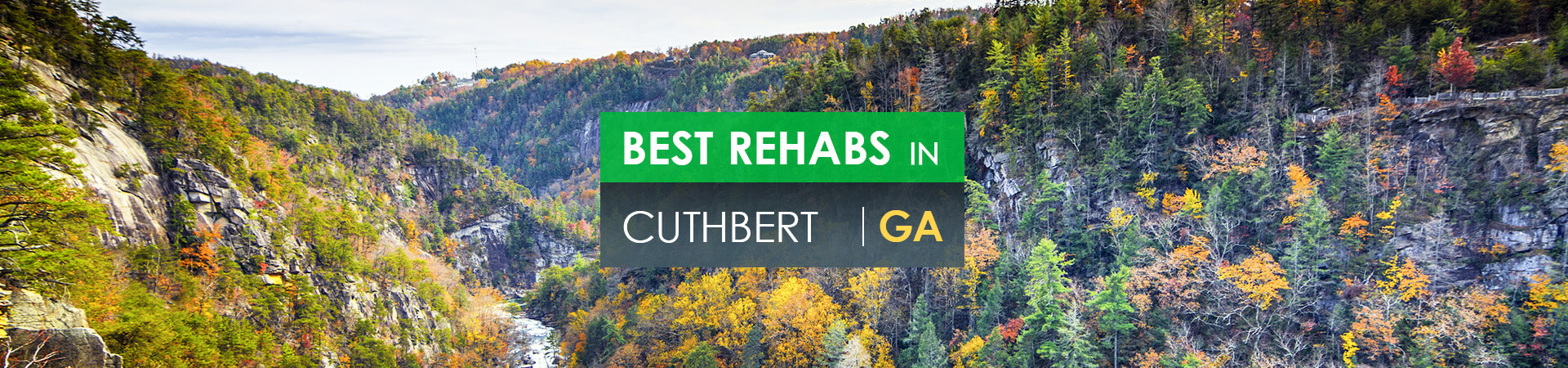 Best rehabs in Cuthbert, GA