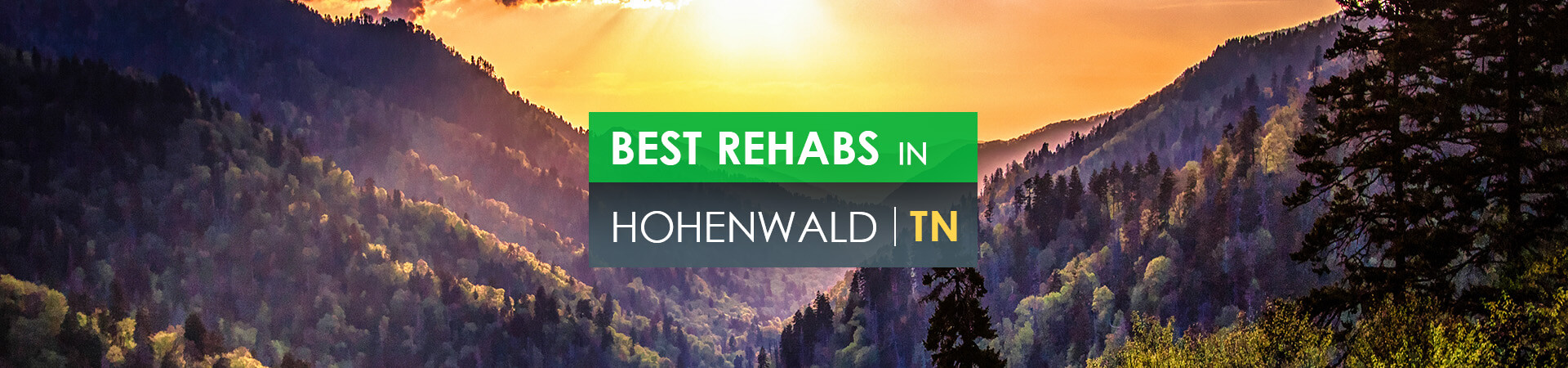 Best rehabs in Hohenwald, TN
