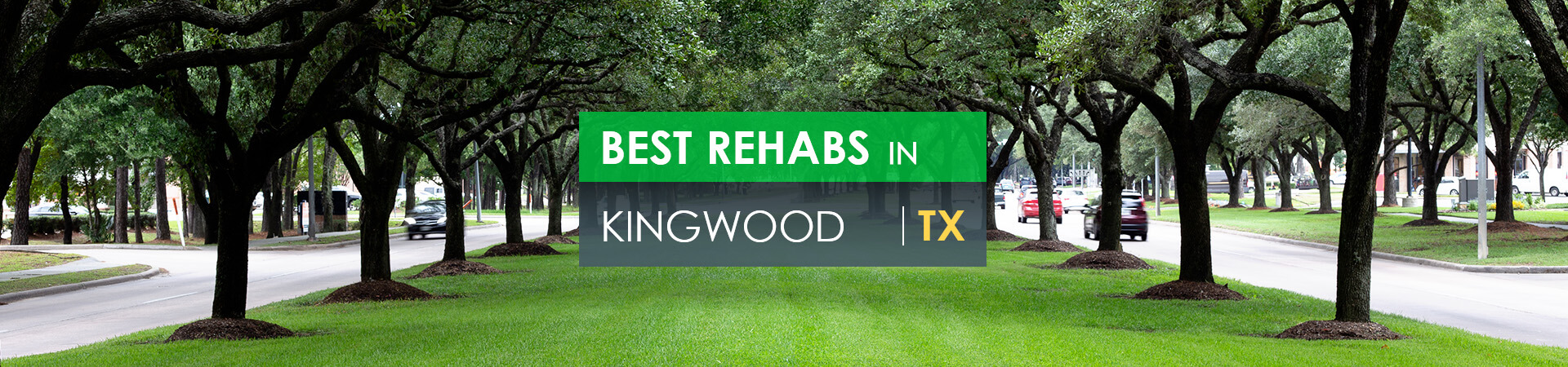 Best rehabs in Kingwood, TX