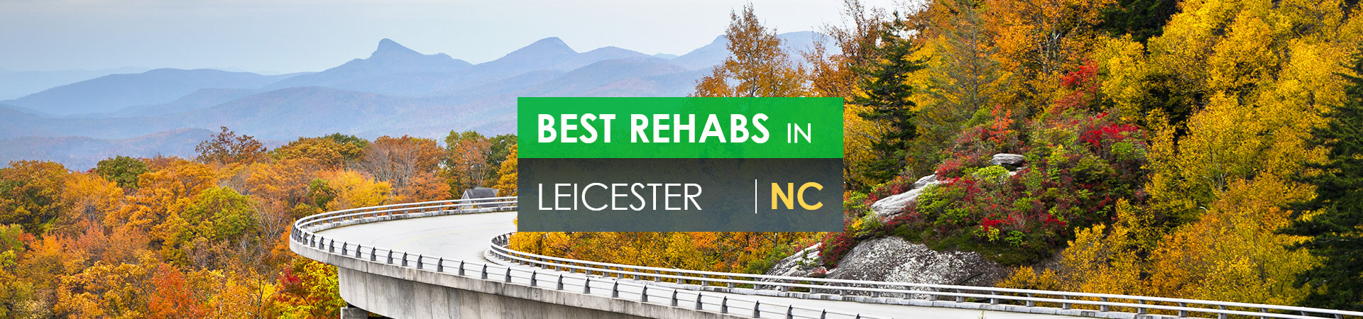 Best rehabs in Leicester, NC