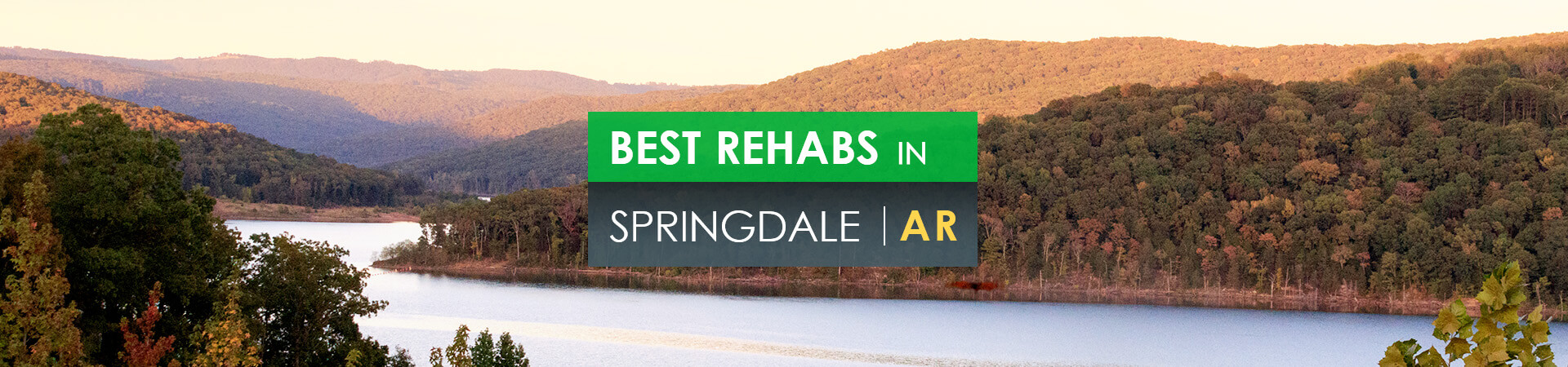 Best rehabs in Springdale, AR