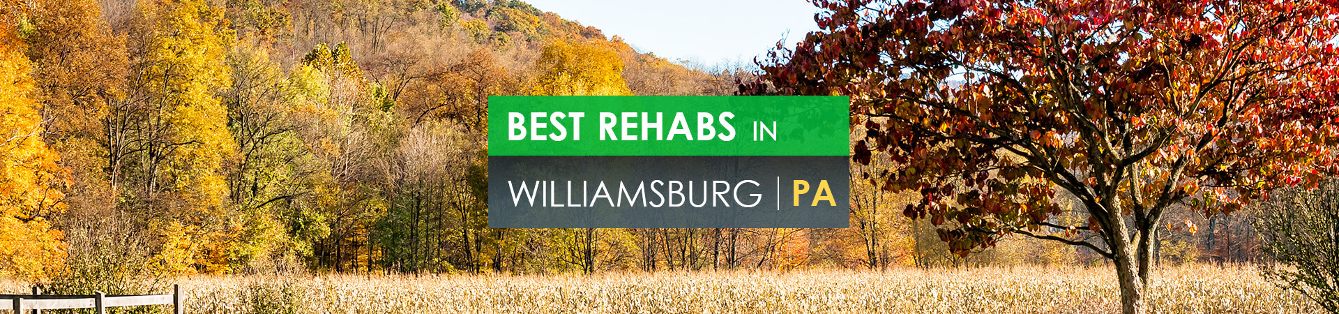 Best rehabs in Williamsburg, PA