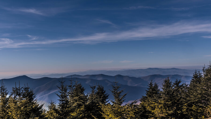 Mount Mitchell State Park, North Carolina