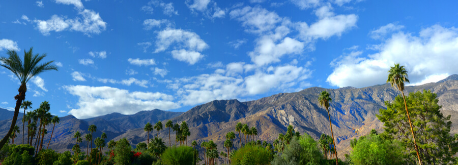 Palm springs, California USA