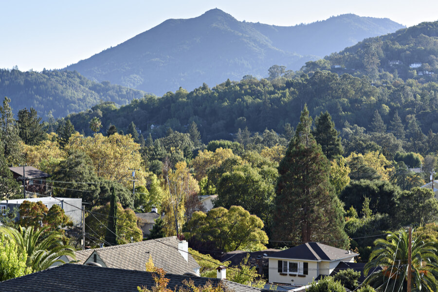 Rooftops of San Anselmo