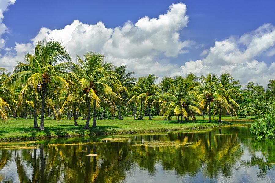 botanic garden, FL, USA