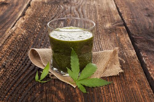 green cannabis smoothie