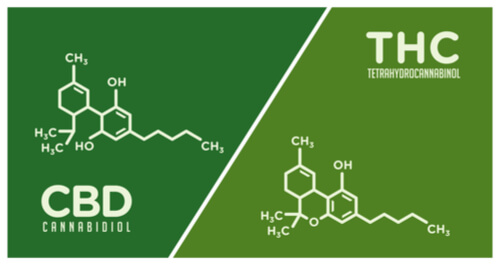 molecules of cbd and thc