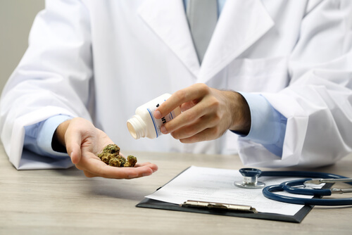 talking to marijuana doctor