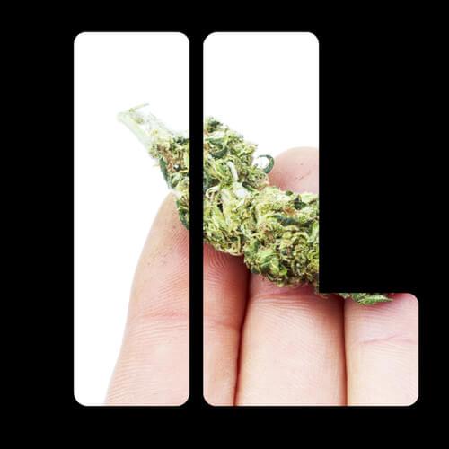 cannabis card in illinois