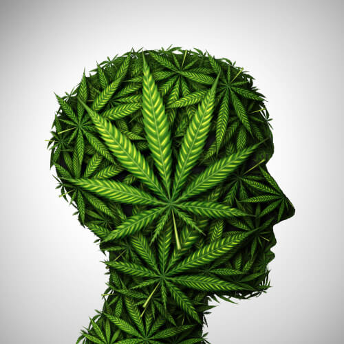 cannabis effect on brain
