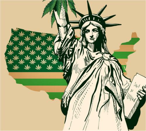 cannabis prescription in new york