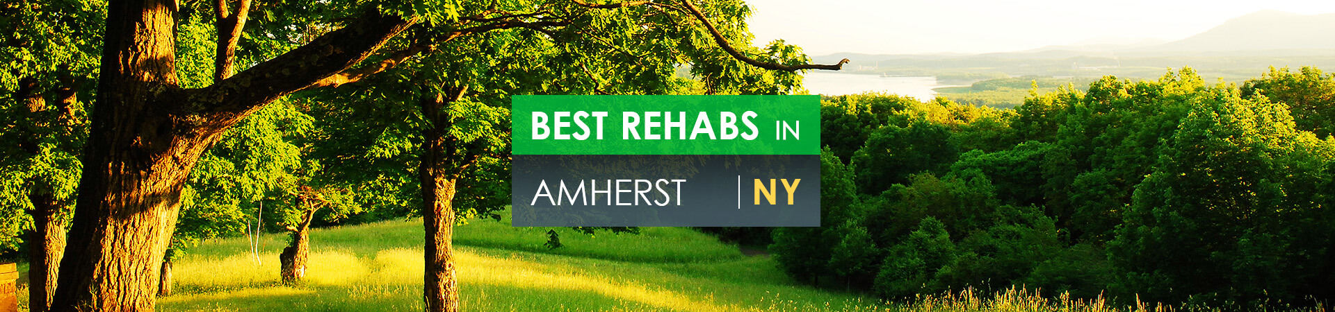 Best rehabs in Amherst, NY