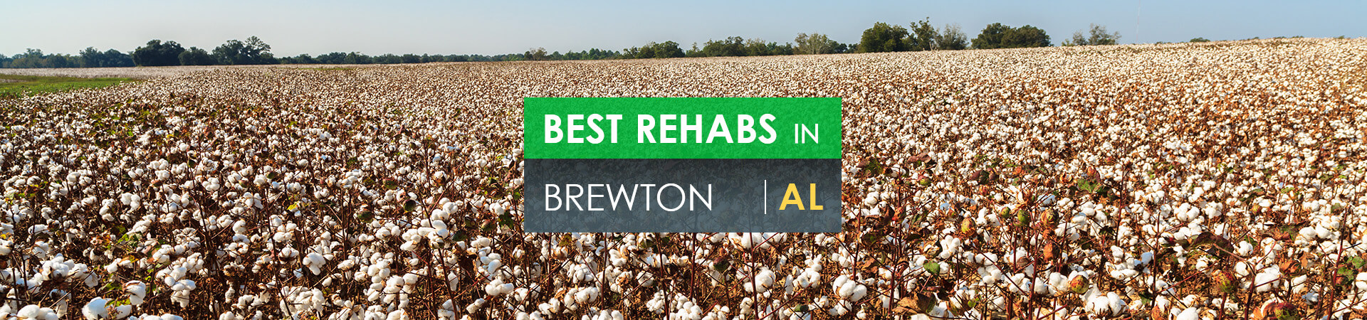Best rehabs in Brewton, AL
