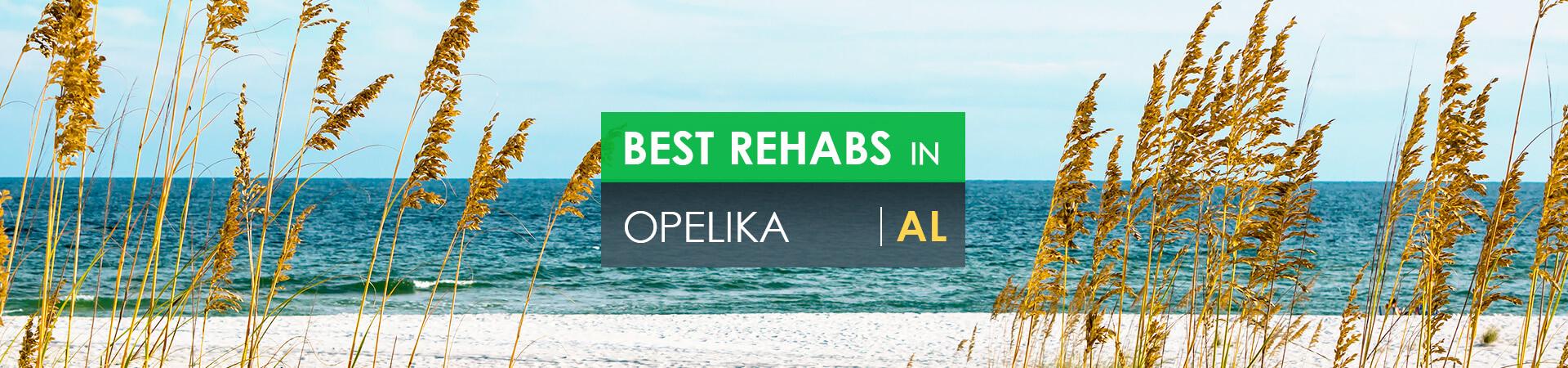 Best rehabs in Opelika, AL