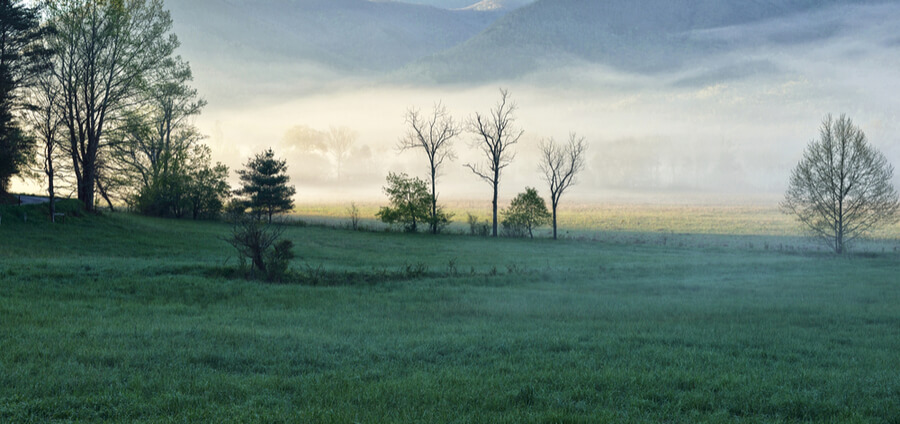 Cades Cove in the Smoky Mountain N.P. Tennessee