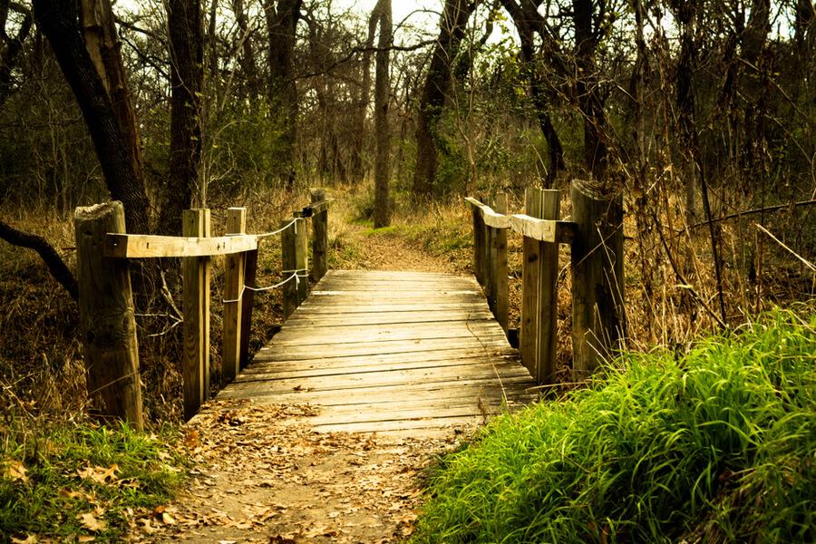Path in River Legacy Park in Arlington, TX