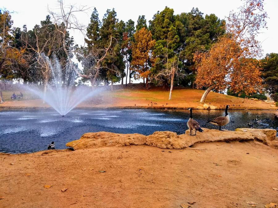 Tewinkle Park in Costa Mesa, California, USA