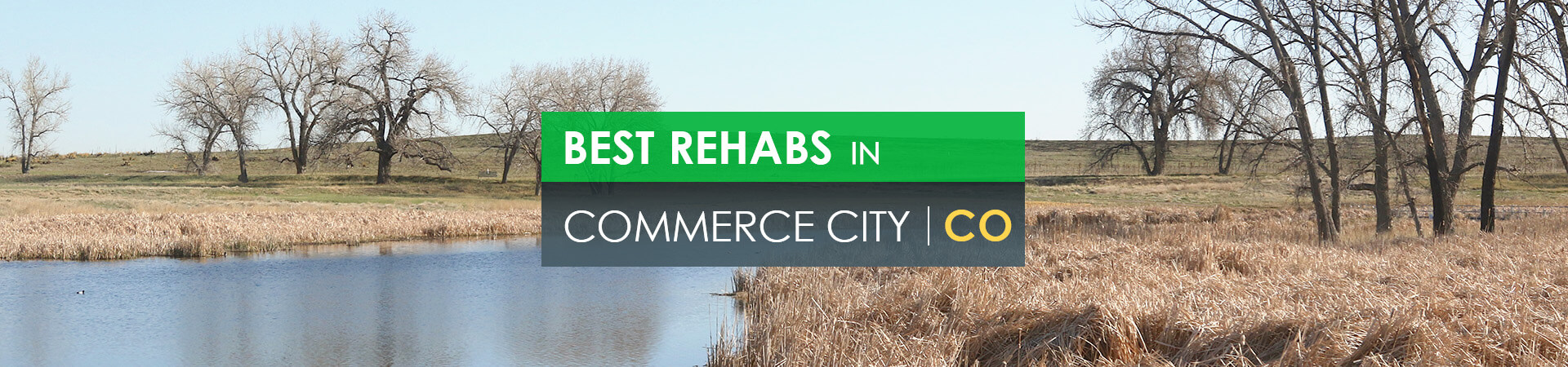 Best rehabs in Commerce City, CO