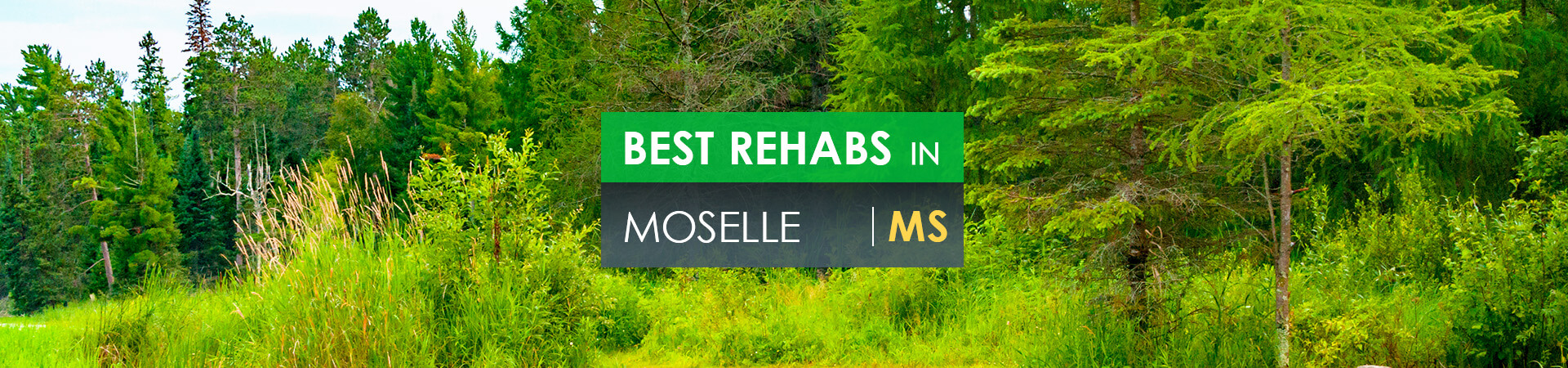 Best rehabs in Moselle, MS